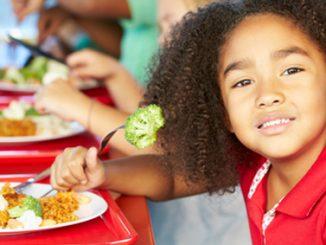 lunch, school meal