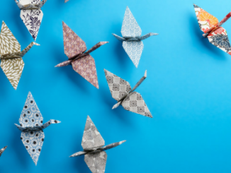 Leadership - origami birds